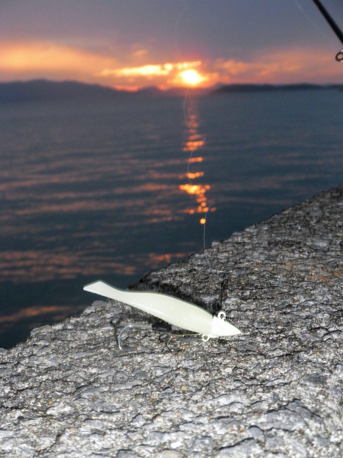 和歌山北港魚釣り公園で「タチウオ」釣れた情報が入りました!