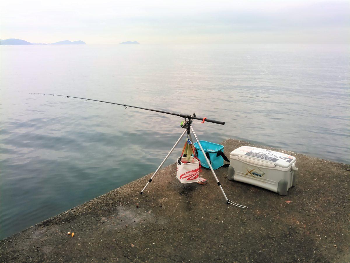 """お正月用の""""めで鯛""""を釣る!"""
