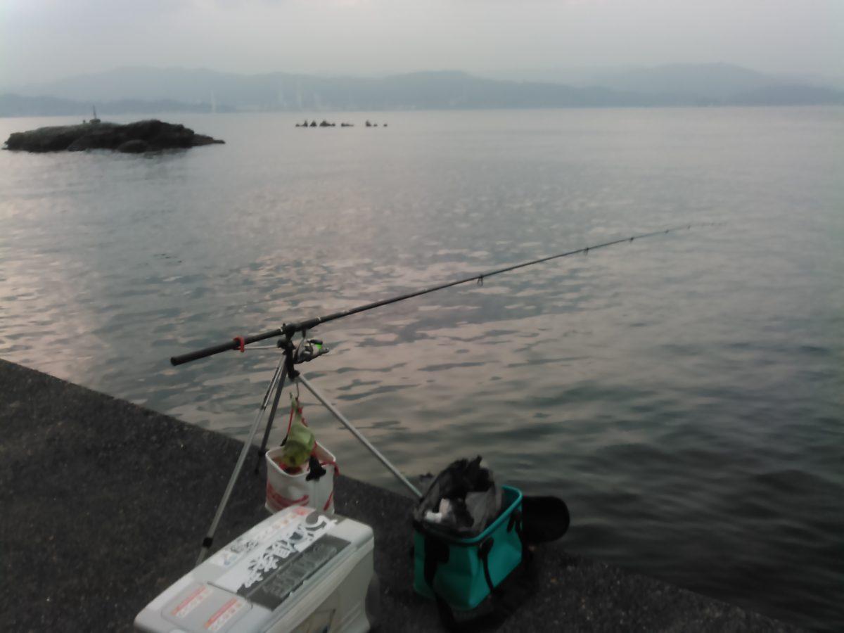 紀北の海にも、冬には冬の釣りモノが有ります♪